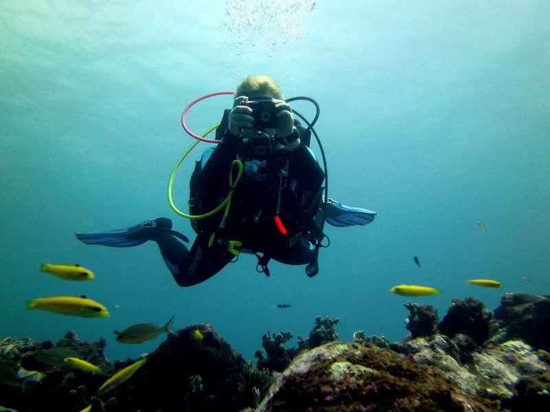 Scubadiving in Dominican Republic: Las Galeras Divers